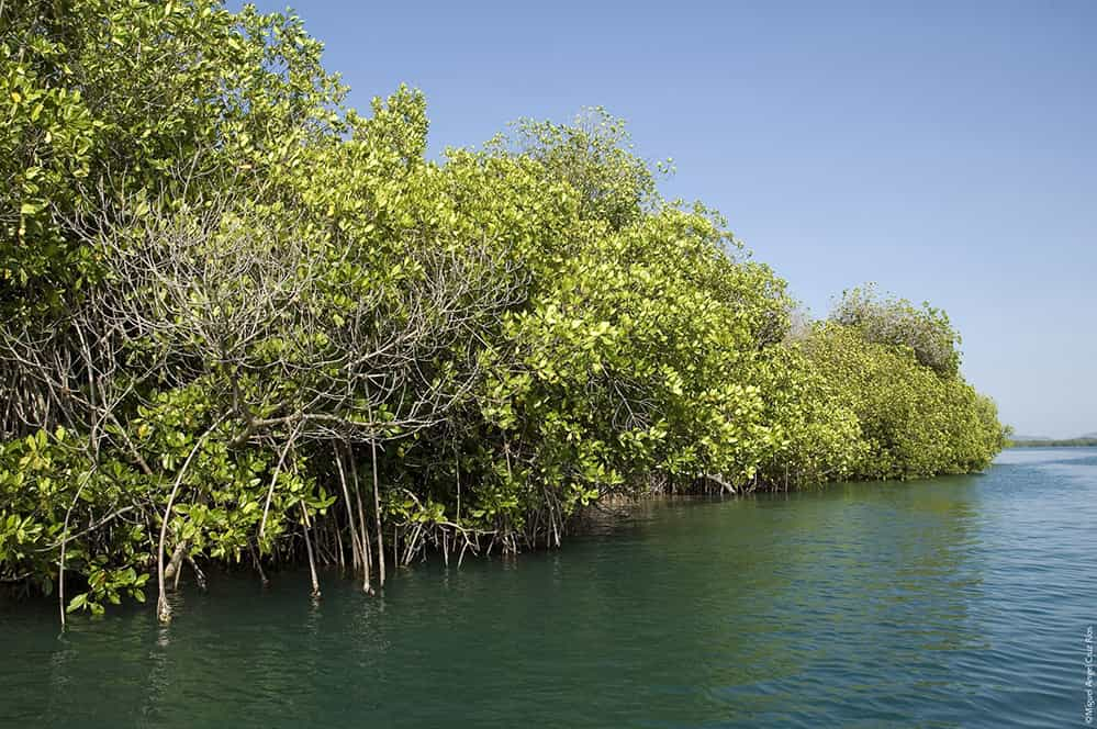 Chacahua Lakes