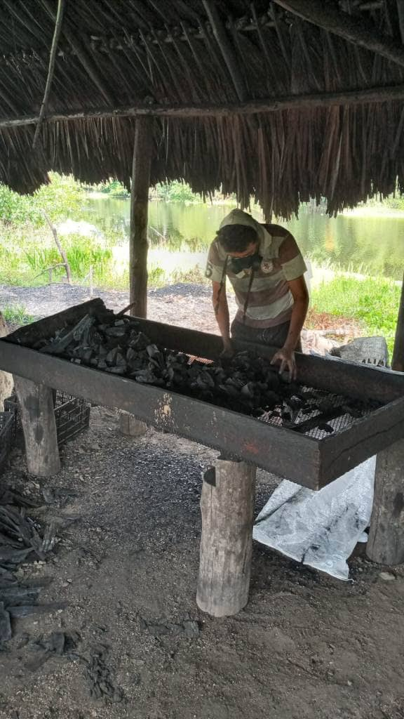 Production of mangrove charcoal.
