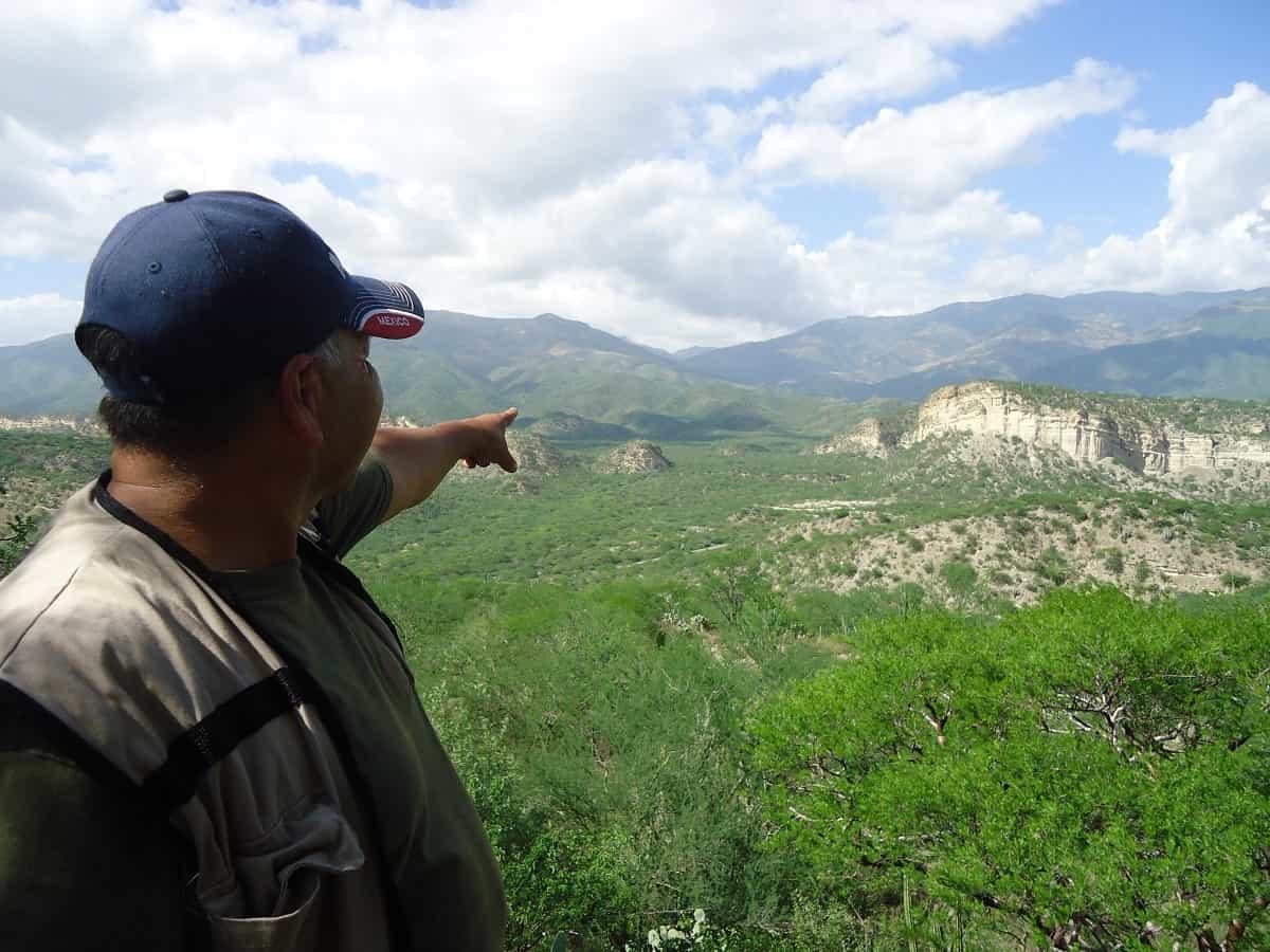 Tehuacan-Cuicatlan Biosphere Reserve, Puebla and Oaxaca.