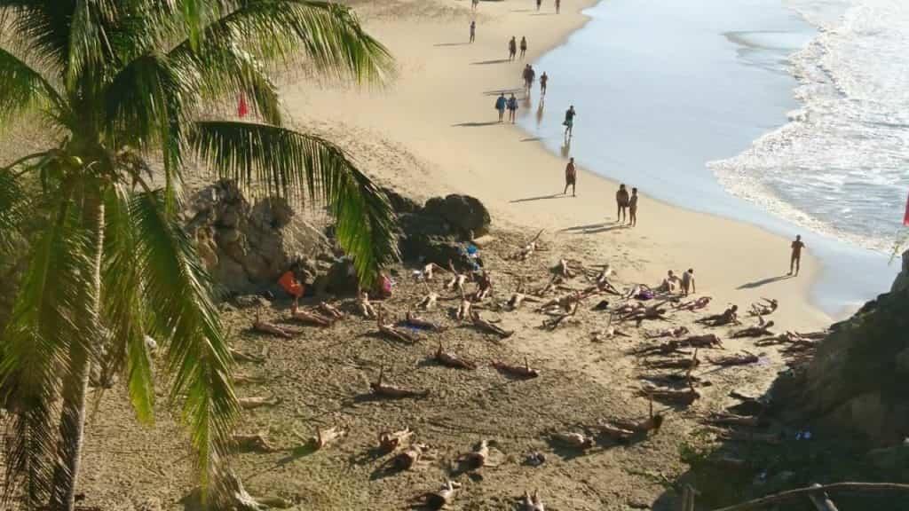 Zipolite beach in Oaxaca