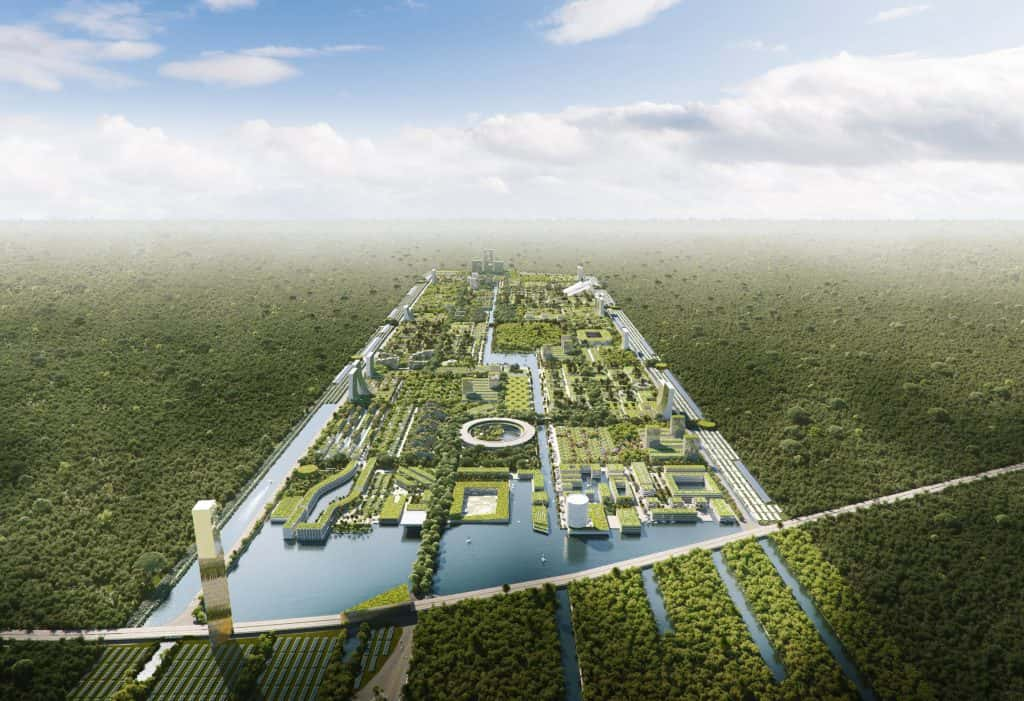 Smart Forest Cancun
