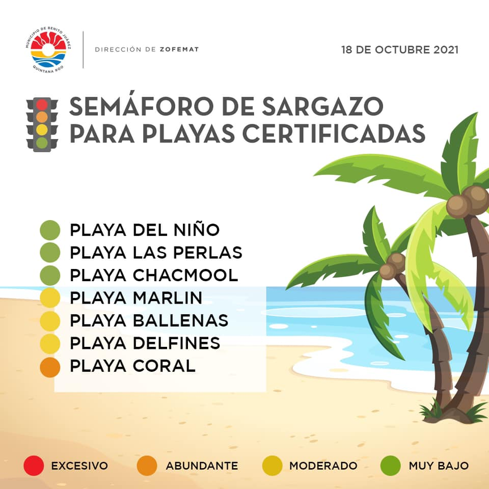 The seaweed status indicator of the certified beaches in Cancun.