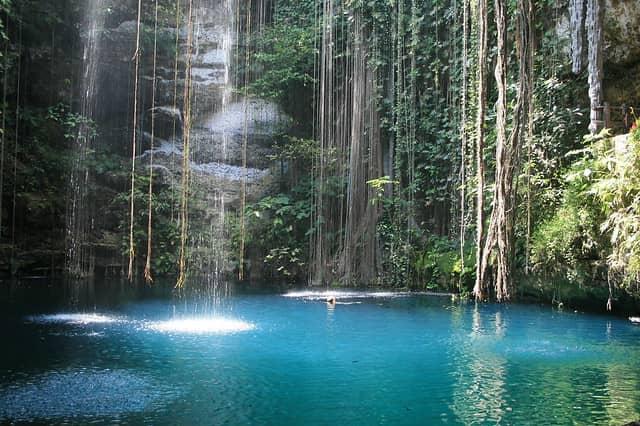 Swimming in the Mayan cenote.